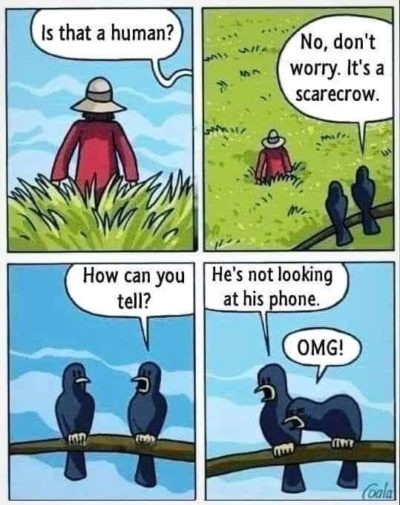 Ha ha phone addiction