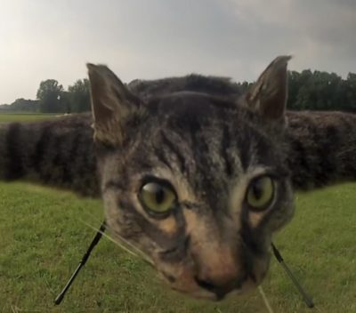 First ever flying cat drone!
