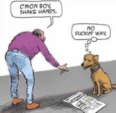 Dog is right tho