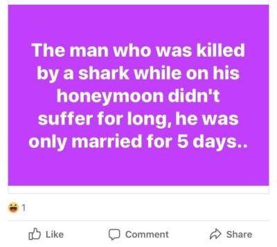 Ha ha marriage bad, shark good!