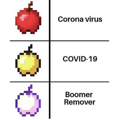 BoomerRemover