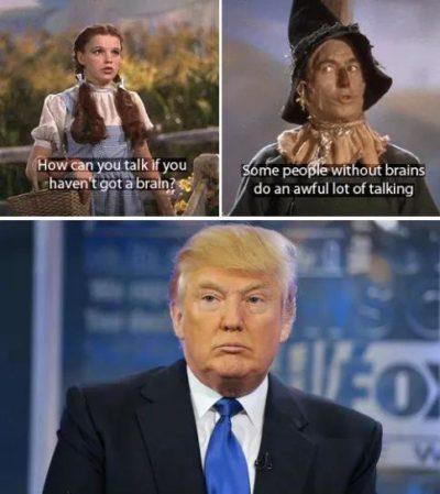Wisdom of Oz