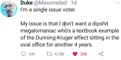 Single issue voter
