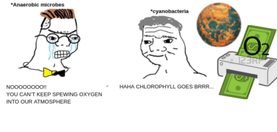 Oxygen breathers rise up