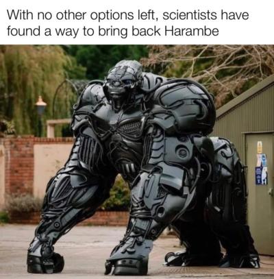 Optimus Harambe!