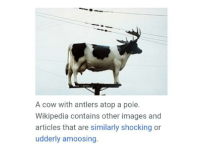Ah wikipedia. Never change.