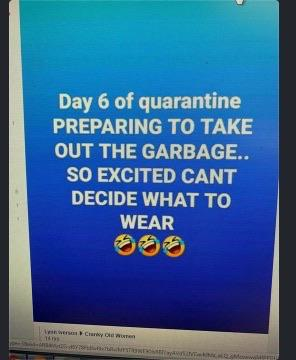 My teacher made a class group chat and sent us this quarantine meme today