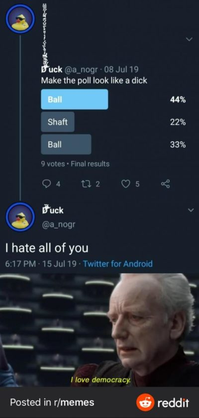 "I hate the ""I love democracy"" memes so much"