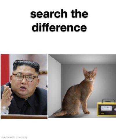 Schrödingers Dictator