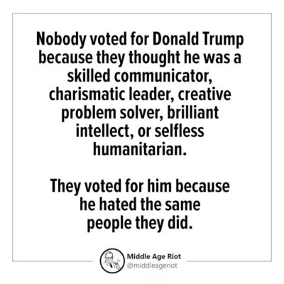 Why did you vote for Trump?