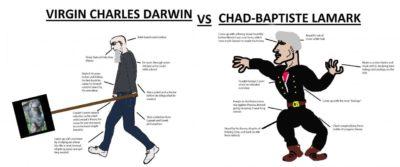Chad Lamark vs Virgin Darwin