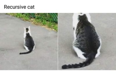 Incatption or catception