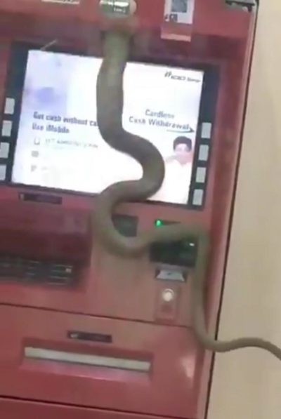 Sql injection is cool but ever tried python injection to hack ATM