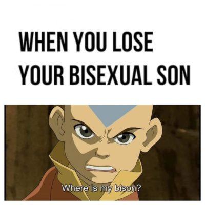 Bi-son
