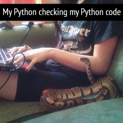 Python checking Python code.