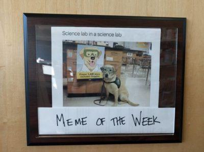 Meta science lab meme