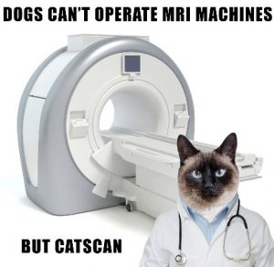 Dr Meowser