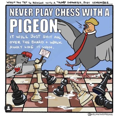 Pigeons playing chess