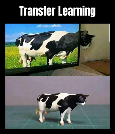 There's transfer learning for you