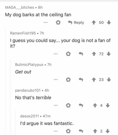 Found this on r/aww today
