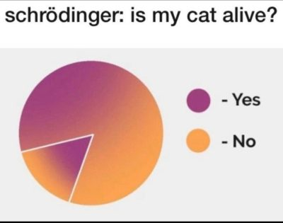 Schrödinger be like: I am confusion