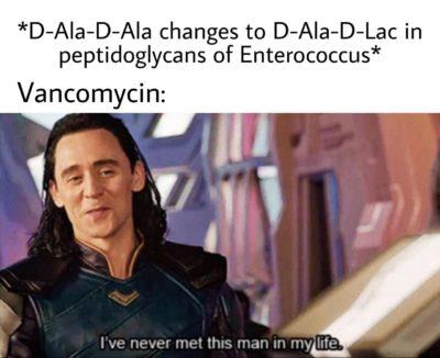 Sounds like a job for Daptomycin