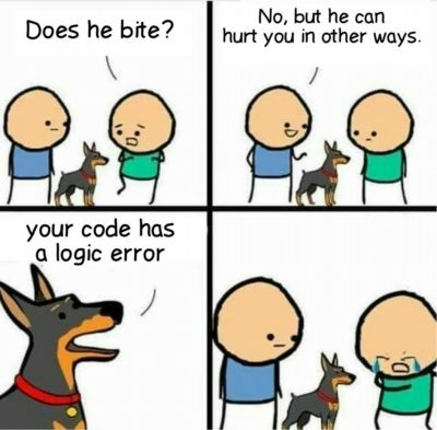 Logical Error
