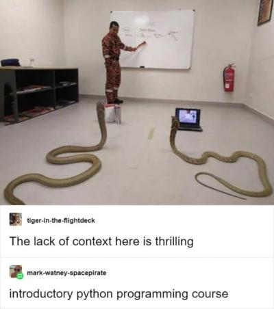 pythons learning python